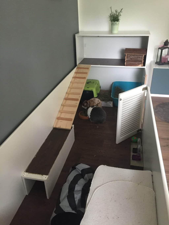 Wohnung Streichen Selber :   Kaninchenstall selber bauen für die Wohnung  Plötzlich Bauherr