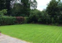 Das erste Mal Rasen gemäht