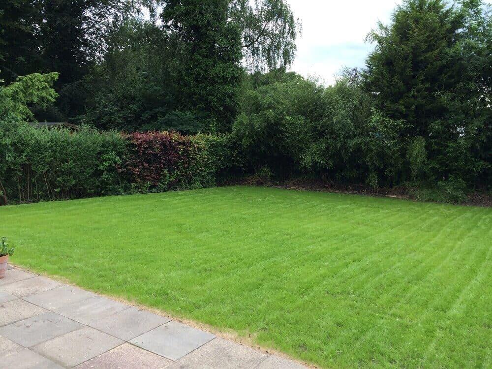 Wir Bekommen Einen Garten Endlich Terrasse Mutterboden Und Rasen