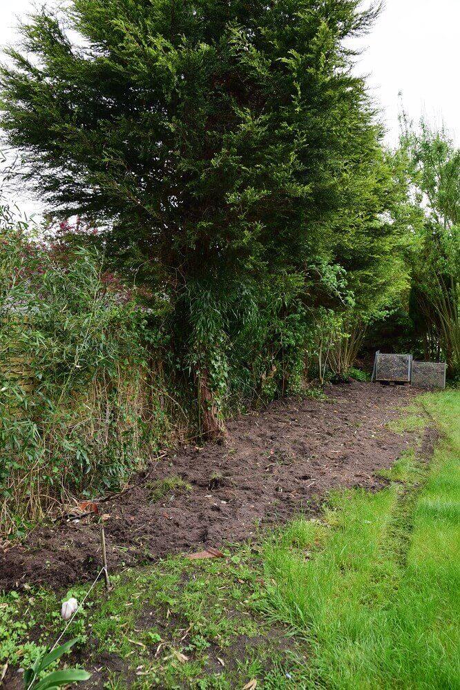Bambuswurzeln wurden mit einem Radlager entfernt