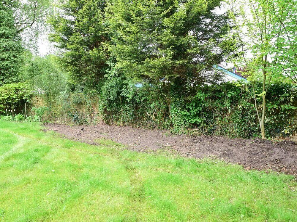 Der Garten ist von großen Bambuswurzeln befreit