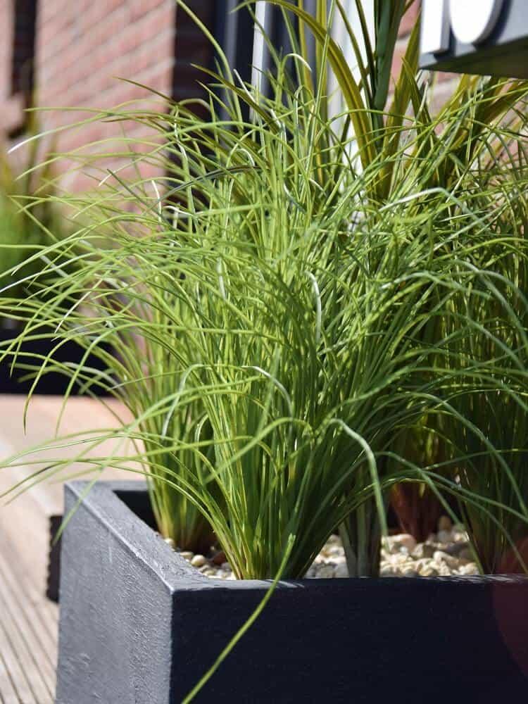 pflanzkübl und kunstpflanzen wirken super im eingangsbereich