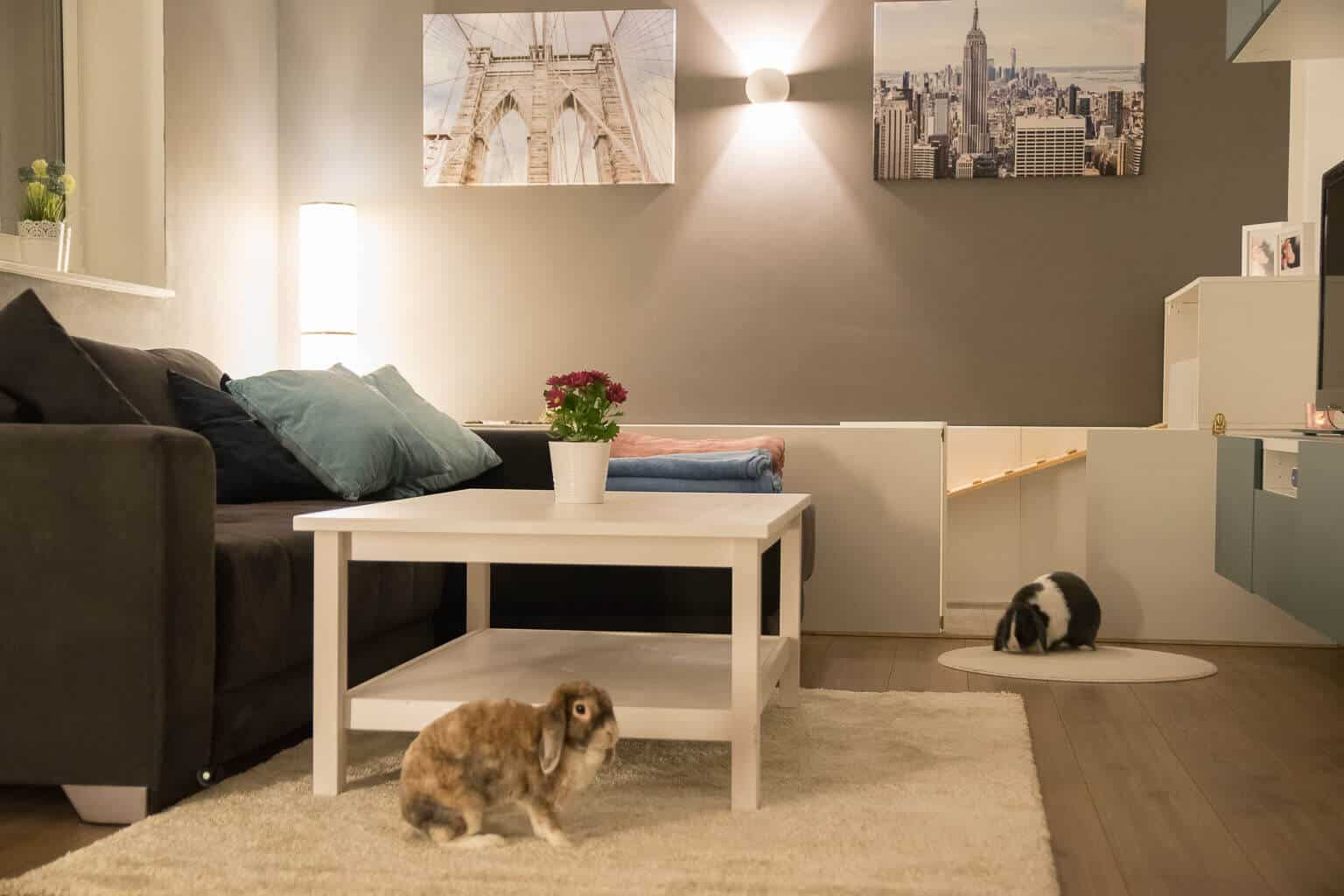 Wohnzimmer in grau ergänzt mit weißen Möbeln