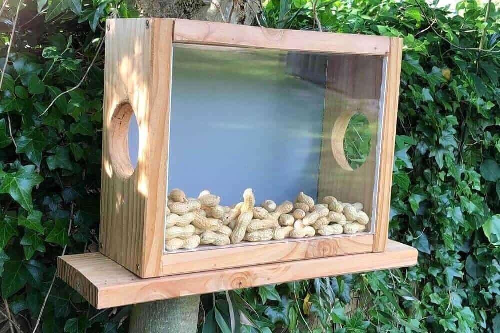 Bauanleitung Eichhörnchen Futterhaus - Futterkasten selber bauen ist gar nicht schwer