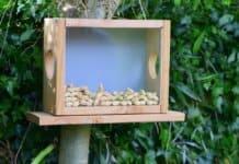 Eichhörnchen Futterhaus selber bauen - Bauanleitung