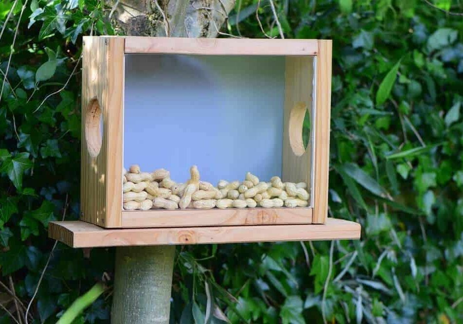 eichhörnchen futterhaus selber bauen bauanleitung
