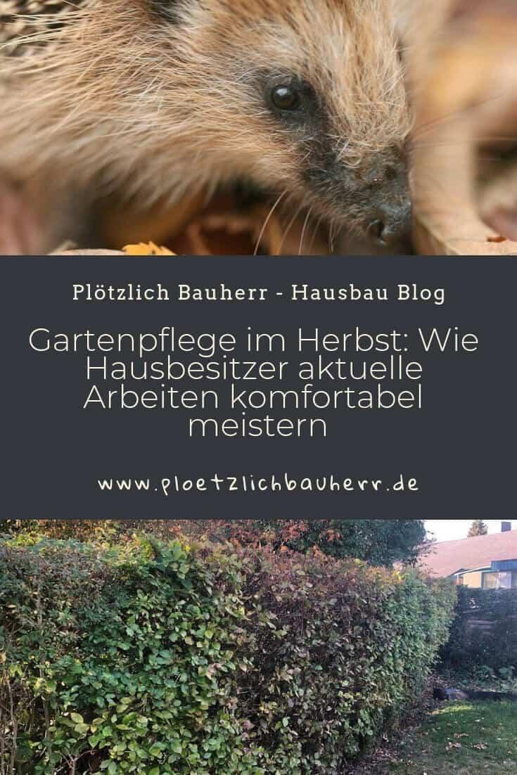 Gartenpflege im Herbst schützt Igel und andere Tiere #Herbst #Tierschutz