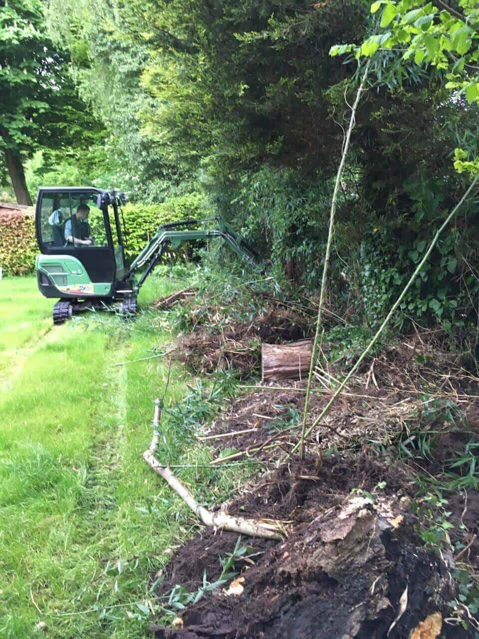 Der Minibagger musste her, um Bambus und Haselnussbäume zu entfernen