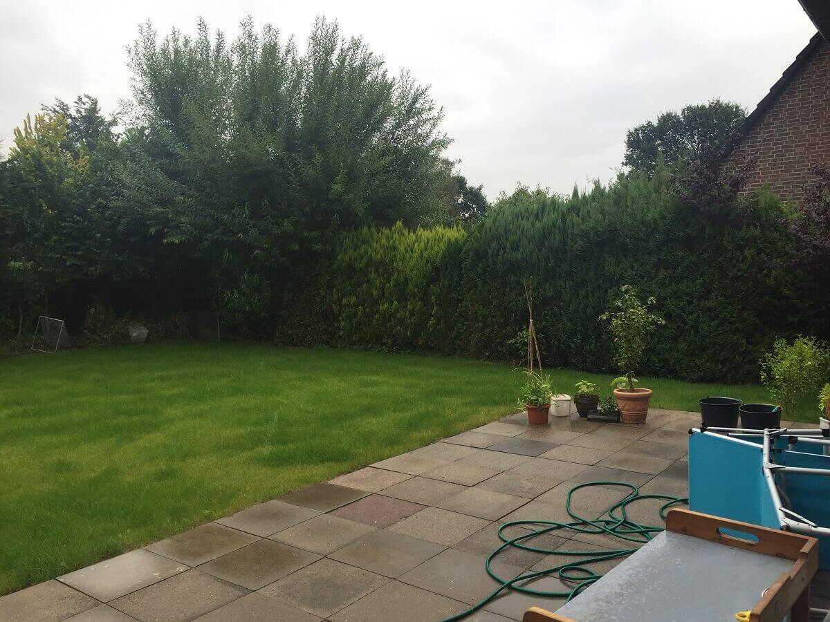 Terrasse und Rasen sind vorhanden, hinten wuchert es aber noch