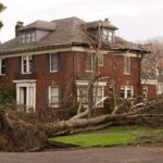 Wetterereignisse und umstürzende Bäume können versichert werden