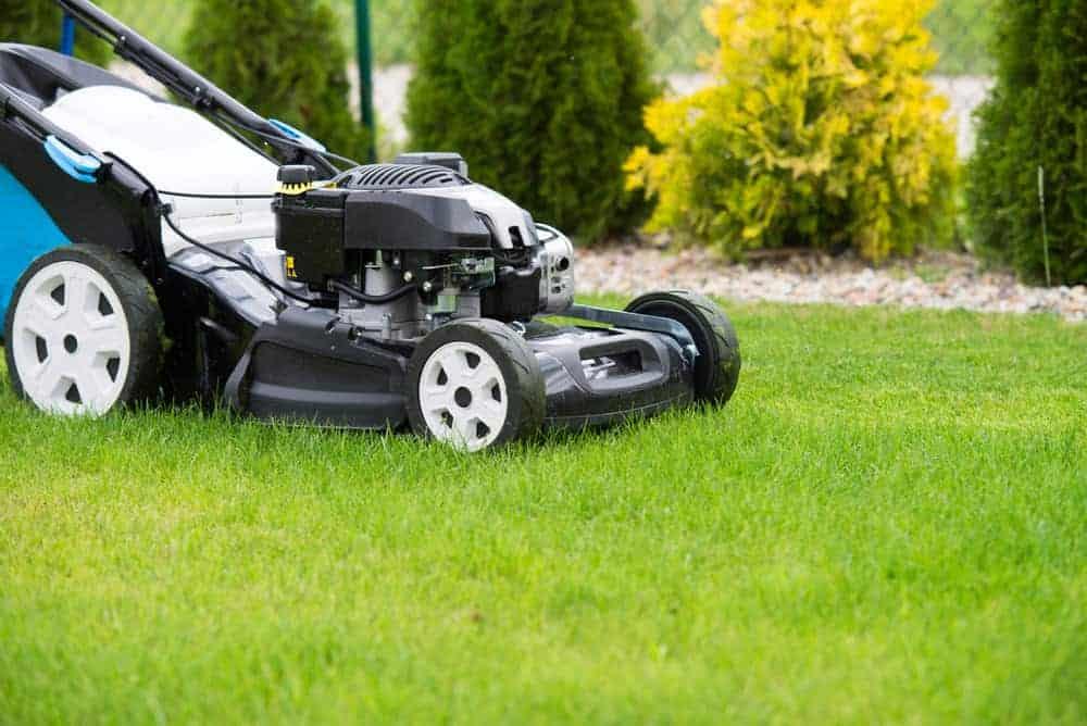 benzin rasenmäher haben deutlich mehr kraft als elektro rasenmäher und sind unabhängig vom stromanschluss weshalb sie sich gut für größere rasenflächen eignen