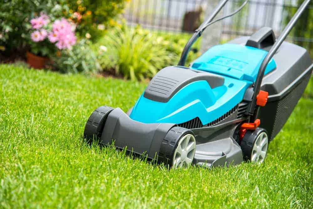 Tipps aus der Praxis: Welchen Rasenmäher benötige ich?