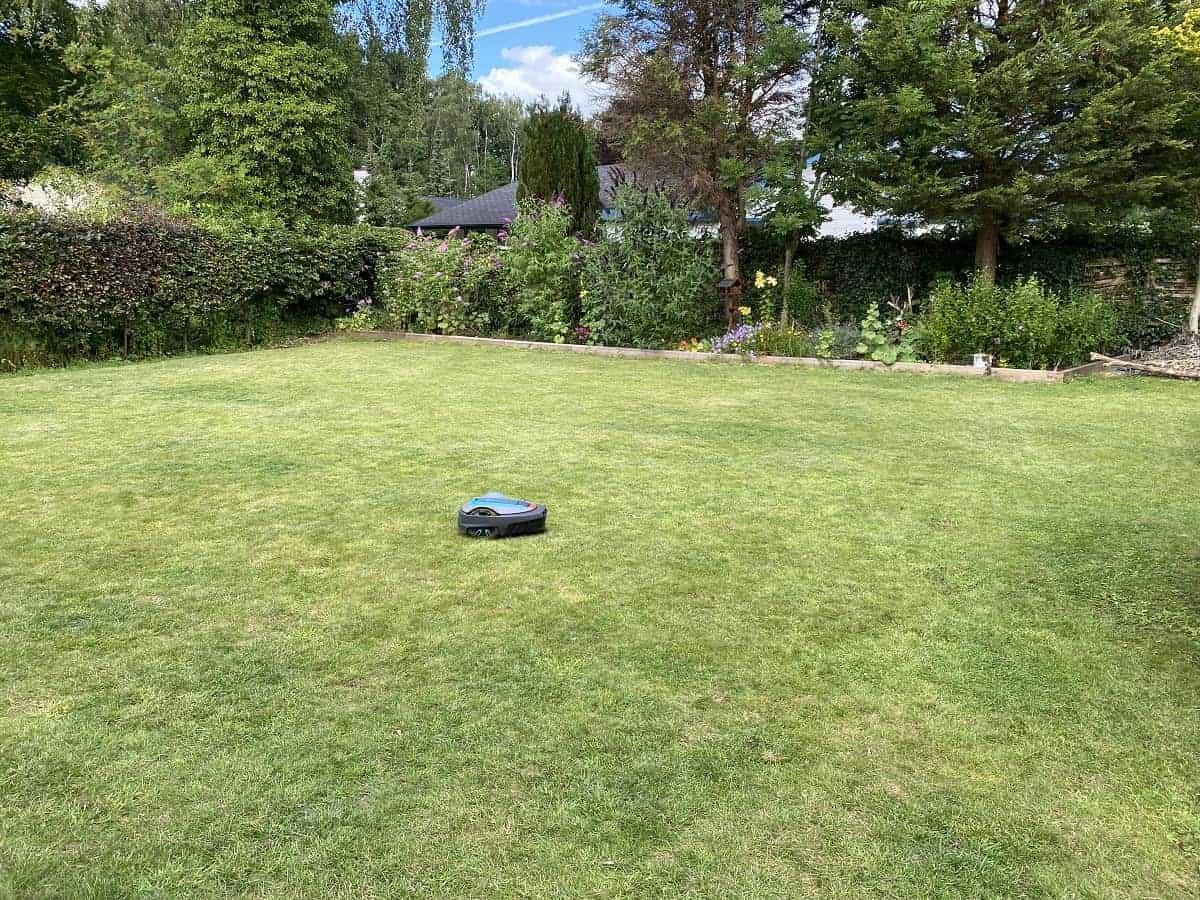 Seit einem Jahr ist unser Rasenmähroboter im Einsatz - Hier findest Du Tipps zur Installation und unseren Erfahrungsbericht