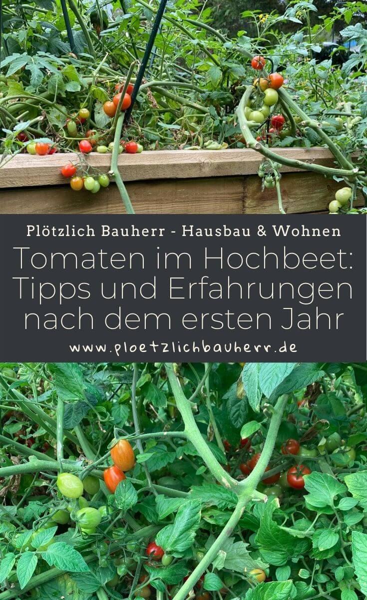 Tomaten im Hochbeet - Tipps und Erfahrungen nach dem ersten Jahr
