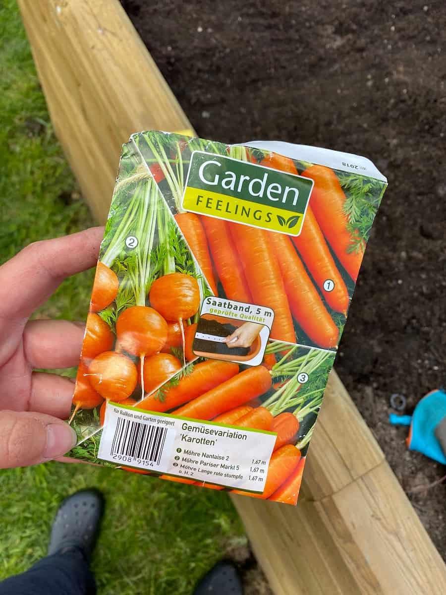 Wir haben Saatgut für verschiedene Karottensorten verwendet und die Möhren im Hochbeet angepflanzt